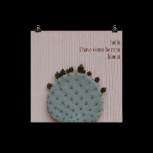 10x10-cactus_mockup_Transparent_10x10