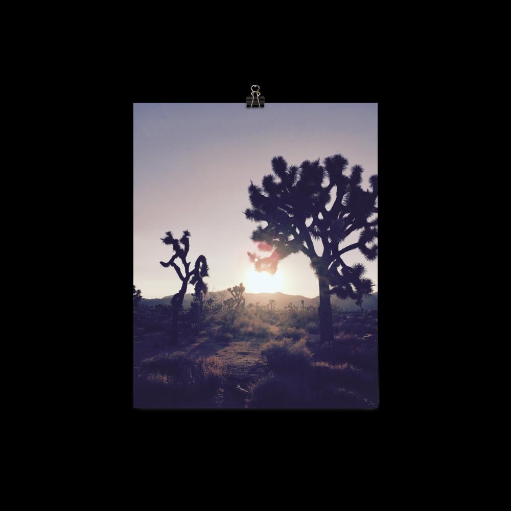 jt-sundown_mockup_Transparent_8x10