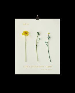 yellow-8x10-shape_mockup_Transparent_8x10